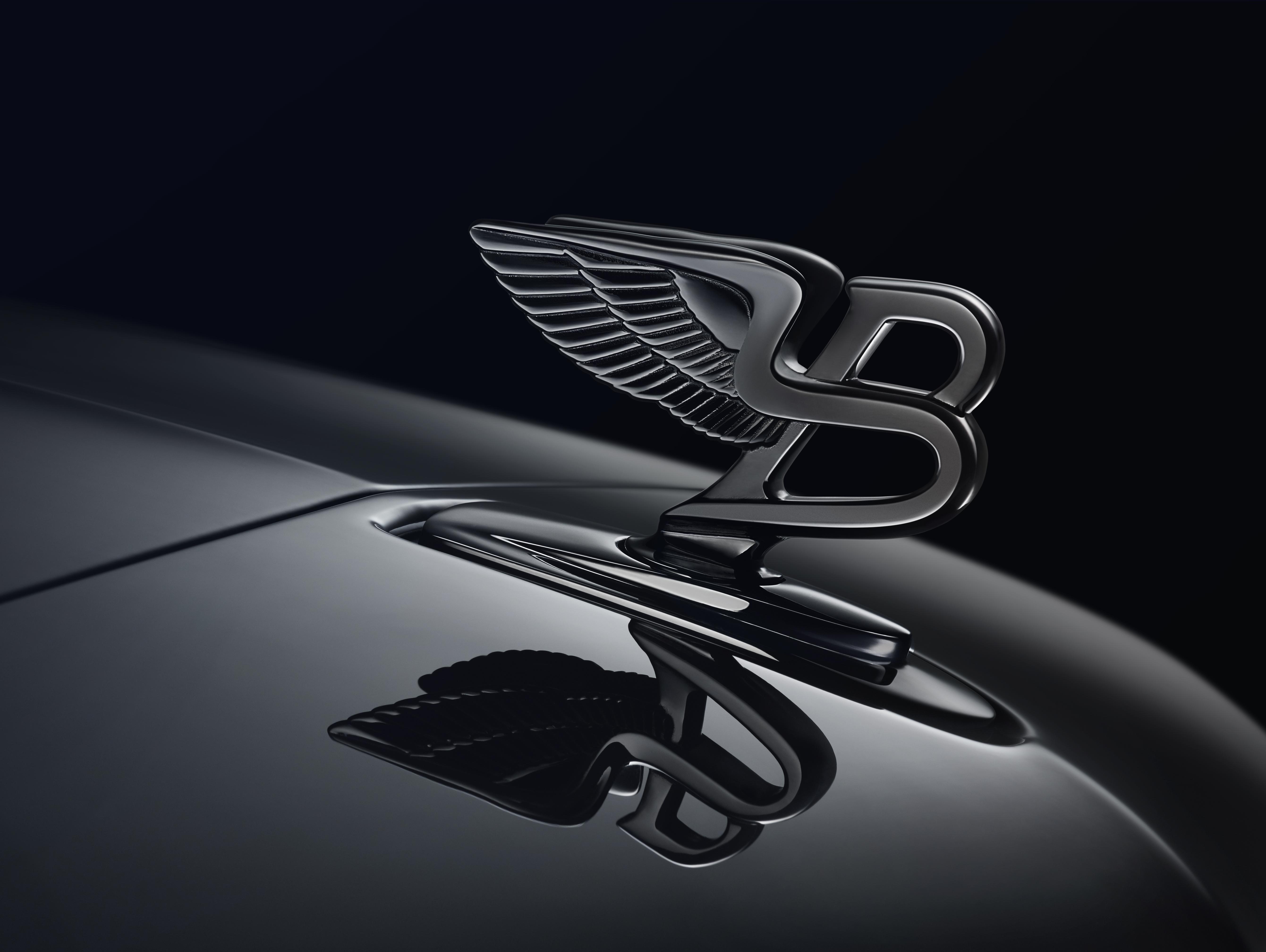 Flying Bentley logo