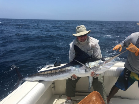 Marlin and Roodters