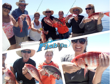 Red Snapper are biting !