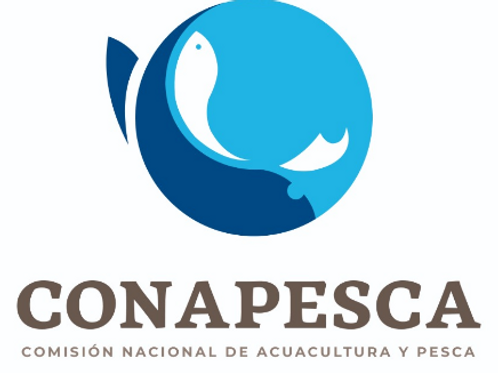 Licencia de pesca / Fishing license