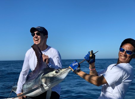 1 #Wahoo 2 #Dorado 2 #Marlinreleased