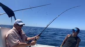 Sailfish, Striped Marlin and Dorado