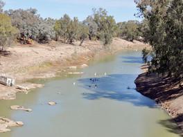Murray-Darling Basin Plan on target