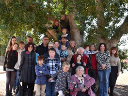 Battle for Bourke's fig trees