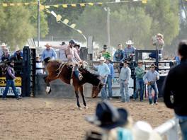 Kick up your heels at the QubeAgri Coonamble Rodeo & Campdraft