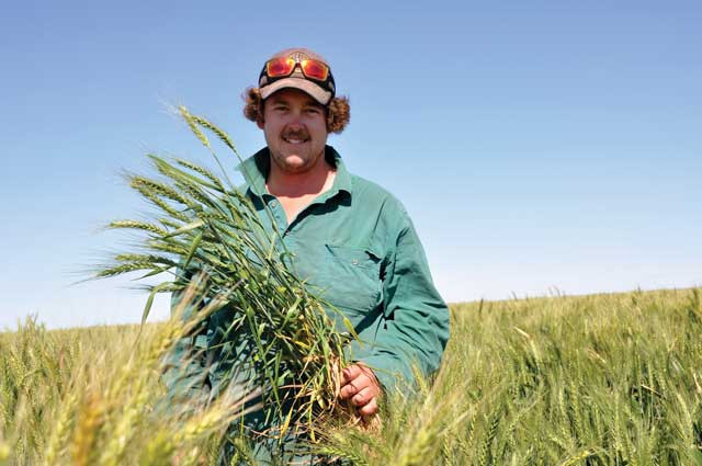 Bumper winter crop for Bourke and Brewarrina