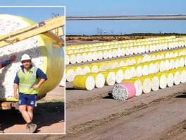 Cotton gin boosts local economy
