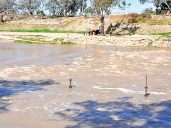 Good Darling flows expected for months