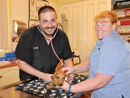 A saviour for Bourke Veterinary services