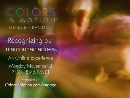 """Join us: """"Recognizing Our Interconnectedness"""" Online Practice Group - Monday November 2, 2020"""