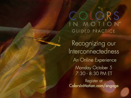 """Join us: """"Recognizing Our Interconnectedness"""" Online Practice Group - Monday October 5, 2020"""