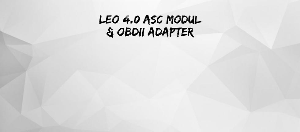 Leo ASC Modul Dongle.png