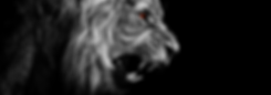 Panthera Leo Soundgenerator