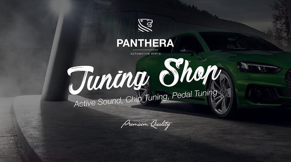Panthera Shop Header – 1.jpg