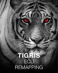 Panthera Tigris Software Optimierung Chiptuning