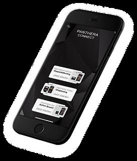 panthera conect app design.png