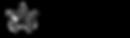 ng_new_logo.png