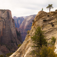 The Lookout (Zion N.P.)