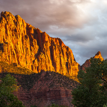 The Watchman Sunset Glow (Zion N.P.)