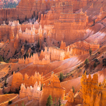 Layers of Bryce N.P.