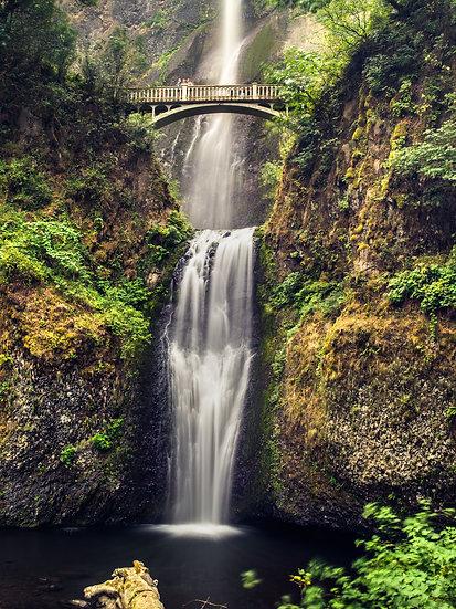 Multnomah Falls (Lower)