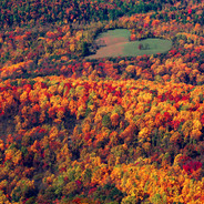 Autumn Heart Appalachian Mountains