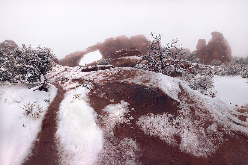 Skyline Arch With Snow Horizontal