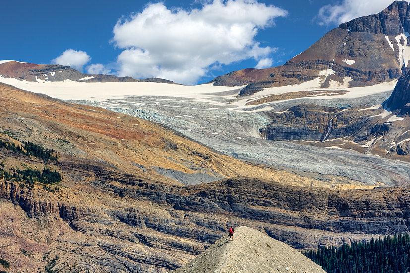 Iceline Trail Hiker (Yoho N.P.)