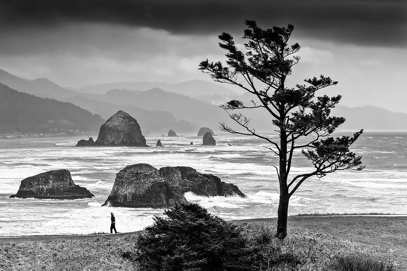 Mother + Nature (Cannon Beach Storm)