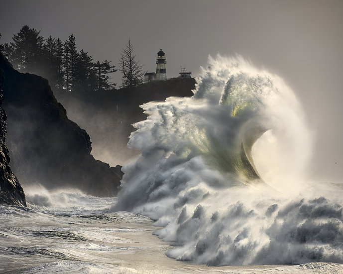 Power and Beauty - Ocean Wave
