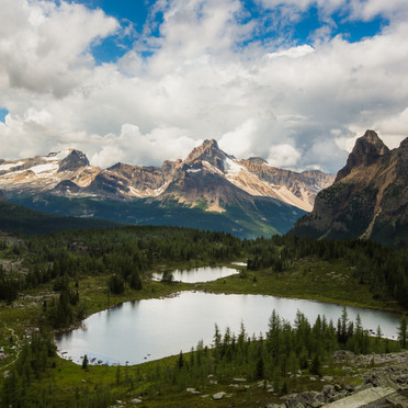 Lake O'Hara Trail and Cathedral Mountain