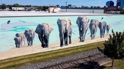 Bradly Goff Elephant Mural Grand Rapids