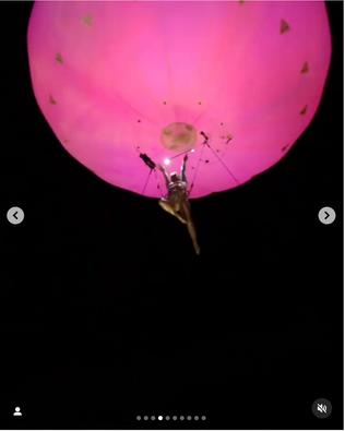 Screen Shot 2021-01-11 at 1.19.29 PM.png