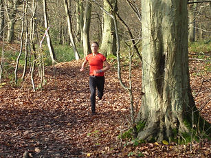 In the woods - Nov 2014 1.jpg