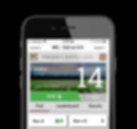 football half screen.jpg