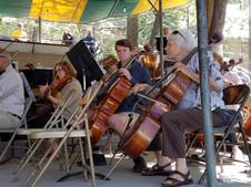Cellos 1.jpg