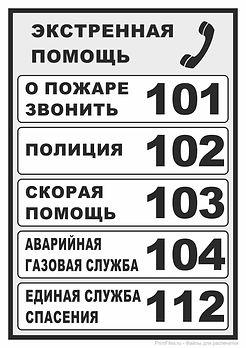 tablichka-ekstrennaya-pomosch-cherno-bel