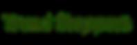 Trendsteppers.com logo