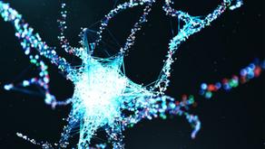 Anima immortale, la Fisica Quantistica lo dimostra