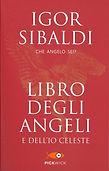 libro-degli-angeli-e-dell-io-celeste-148