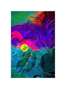 natureza multicolorida.png