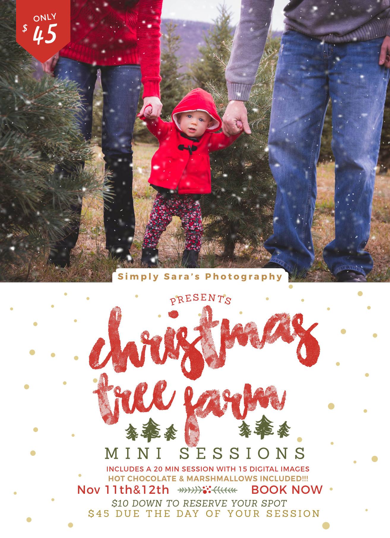 Christmas Tree Farm Mini Sessions 11/21
