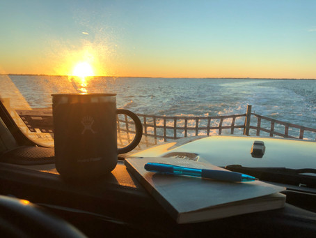 Morning adventures...