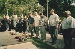Тюль 2005 г.