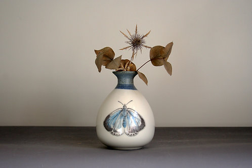 Small Butterfly Bud Vase Design - Navy Rim