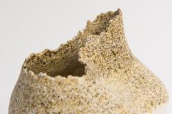 Spores, detail