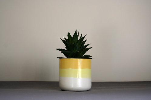 Small Planter- Yellow
