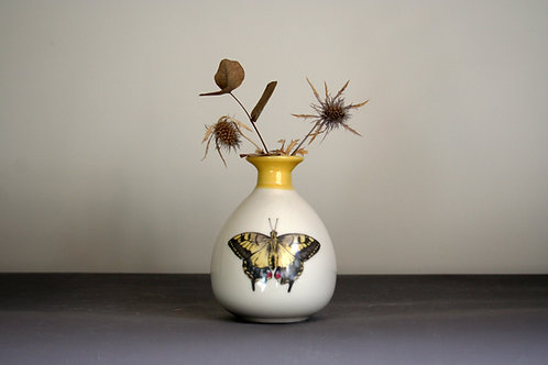 Small Butterfly Bud Vase Design - Yellow Rim