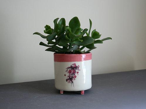 Small Daisy Planter