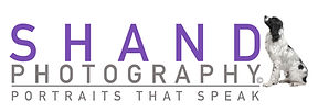photographer, shand, pets, cats, dogs, ontario